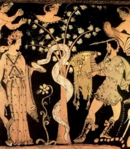 Adormecido el dragón por la poción que le dio Medea, Jasón se apodera del Vellocino de oro. Crátera de figuras rojas (detalle), s. lV a.C. Museo Arqueológico Nacional de Nápoles.